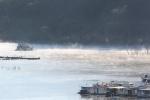 Lake_Eildon_Houseboat_camping_Marina_Lake_View